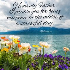 Heavenly Father, YOU are my Peace.   Heavenly Father, I praise You for being my Peace in the midst of ...
