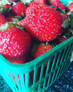 Our Field Strawberries are Berry Berry Sweet  . . #teamleeandmarias