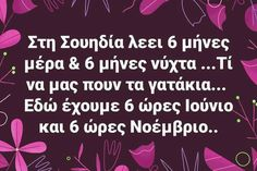 Funny Greek Quotes, Funny Quotes, Speak Quotes, Bring Me To Life, Greeks, Yolo, Funny Images, Laugh Out Loud, Facts
