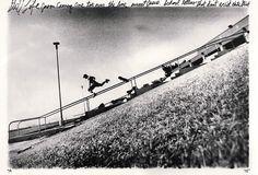 daniel harold sturt - Google Search Lacuna, Skateboarding Photography, Animals, Dan, Gardening, Google Search, Animales, Animaux, Lawn And Garden
