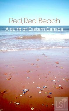 Drama and quirks, welcome to Eastern Canada Shells on the red beach of Prince Edward Island, in Canada East Coast Travel, East Coast Road Trip, Places To Travel, Places To See, East Coast Canada, Canada Travel, Canada Trip, Red Beach, Atlantic Canada