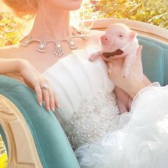 Bride with Pig. This WILL be me!! Lol kidding but Michael did say we are getting a teacup pig! Eventually lol.