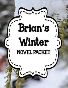 Brian's Winter - Comprehension and Vocabulary Novel Unit