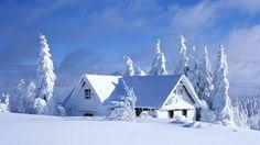 L'immagine può contenere: cielo, nuvola, albero, spazio all'aperto e natura