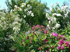 Jardins Merriments. Fotografia: http://www.gardens-to-go.org.uk/wallpaper2012_merriments.htm