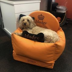 Sweet Madge loves her new car seat ❤️ Bed Measurements, Leather Car Seats, Dog Car Seats, Cozy Bed, Pet Names, Dog Harness, Bean Bag Chair, Kit, Sweet
