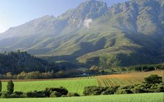 Stellenbosch South Africa Most beautiful vineyards I have ever seen. Beautiful World, Beautiful Places, Beautiful Scenery, Wonderful Places, Amazing Places, Places To Travel, Places To Visit, Travel Destinations, African Holidays