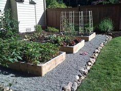 Raised Garden Beds!