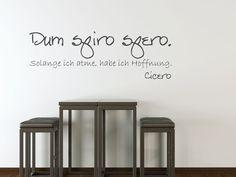 """Dum Spiro Spero""    I like this for a wrist tattoo!   Latin for ""As I breathe, I hope"""