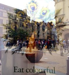 image by / imagem de Laura Novo de Azevedo