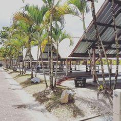 De meiden hadden een dagje vrij van school, studiedag. Ja, ook in Suriname hebben ze studiedagen. Maar daardoor hadden wij de gelegenheid om een dagje te vertoeven op #whitebeachsuriname. Een heerlijk strand aan de Suriname rivier. Zoals de naam zegt met mooi wit zand, hutten tegen de zon en een heerlijk zwembad. Daarnaast kun je ook in het afgezette stuk rivier heerlijk zwemmen. De kinderen en wij natuurlijk hebben heerlijk genoten. Binnenkort verslagje op blog. 🌴🍉🦀🦎🦋⛱🌞🌊…