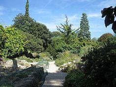 Jardin des Plantes (Paris) — Wikipédia