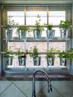 How to Grow Herbs Indoors | 1000 - Modern#grow #herbs #indoors #modern Hanging Herb Gardens, Hanging Herbs, Wall Herb Garden Indoor, Plants Indoor, Home Design, Design Ideas, Modern Design, Design Inspiration, Culture D'herbes