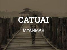 Green coffee to roast yourself. Honey Catuai from Myanmar (Burma). Green coffee beans to roast you… Coffee Roasting, Coffee Drinks, Coffee Beans