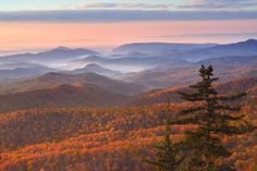 If you want to see real autumn brilliance, take a trip to one of the most searched fall foliage destinations on Yahoo, from Aspen to Napa Valley to the Blue Ridge Parkway.