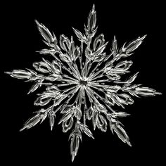 How to photograph snowflakes with DSLR. Capture winter beauty over macro lens. Click here to learn more about snow flake photography.