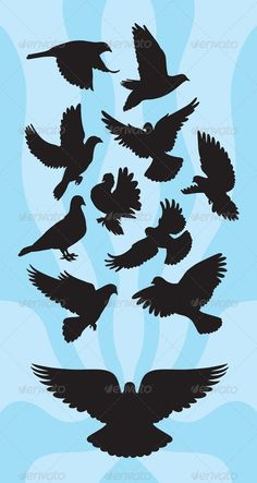 Dove or Pigeon Silhouettes - Animals Characters