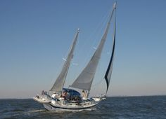 Sailing on Chesapeake Bay, extremely salty and full of jelly fish!