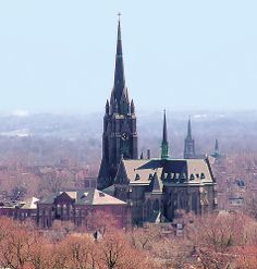 Gothic Revival Architecture, Beautiful Architecture, Old Churches, Catholic Churches, Tower Of Power, American Gothic, St Louis Mo, Cathedral Church, Water Tower
