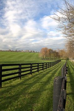 From New York, I would love to head to Kentucky as the second place I would travel to. In Kentucky I would like to visit the beautiful country side where my grandparents grew up.