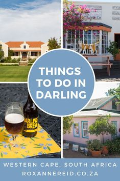 7 things to do in Darling out of flower season - Roxanne Reid Stuff To Do, Things To Do, All About Africa, Wildlife Safari, Slow Travel, Kruger National Park, Beach Walk, Cat Gifts, Africa Travel