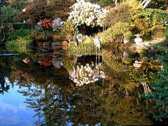 Shore Acres Gardens Coos Bay Oregon