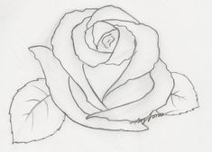 heart with rose drawings in pencil - Google Search