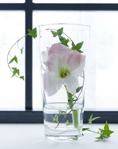 Simple, clear glass BLADET vases let you focus on the blooming beauty within.
