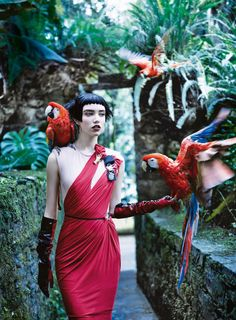 Grace  Hartzel by Mikael Jansson for Vogue US April 2016 | TROPICAL MOOD | Draped  Red Gown