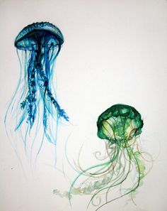 Jellyfish- graceful, deadly, any scale, beautiful