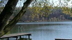Der idyllische Höllerersee / © Vianovis Seen, Cliff Diving, River, Water Pond, Waterfall, Tourism