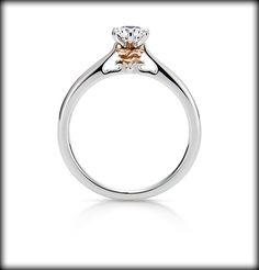 【K.UNO】美女と野獣 The Enchanted Rose エンゲージリング | オーダーメイド ディズニージュエリー | 結婚指輪・婚約指輪のケイ・ウノ  ALL OF THEM.