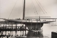 Reliance was the 1903 America's Cup defender, the fourth defender from the famous designer Nat Herreshoff, and reportedly the largest gaff-rigged cutter ever built. #sailing #yachting #sails #sail #boat #wind #sailboat #instasailing #yacht #sport #racing #yachtracing #letsmakesailinggreatagain #sailingstagram #ac #americascup #s/treliance #secretsailing