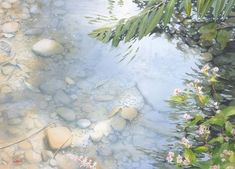 """Yokohama Exhibition 2015 - Abe Toshiyuki """"Light in the water"""" watercolor on Arches 50 x 69 cm, 2015 Watercolor Water, Watercolor Plants, Watercolor Drawing, Watercolor Artists, Watercolor Landscape, Artist Painting, Landscape Paintings, Watercolor Lesson, Painting Gallery"""