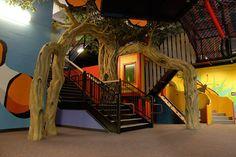 Fox Cities Children's Museum-Appleton, WI. Banyan Tree
