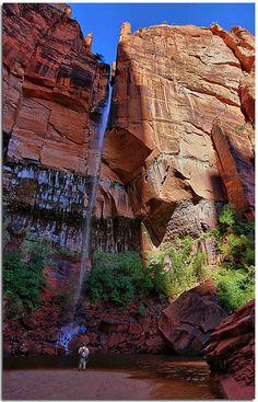 The falls at the Upper Emerald Pool in Zion NP