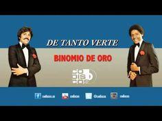 Binomio De Oro - De Tanto Verte (Audio)