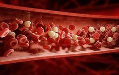 8 alimentos que ayudan a destapar las arterias de forma natural