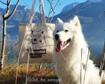 tote bag chic samoyede