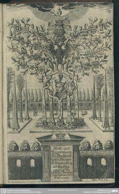 Preißwürdiger Stamm- und Regentenbaum der Herzogen zu Braunschweig-Lüneburg