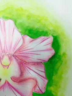 Hanafi : Orchid  - Colour Pencil  - Watercolour