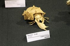 Hermit Crab - Satoshi Kamiya