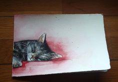Gattino addormentato  -  acquerello