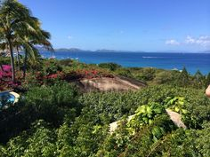 Why You Should Stay at Valley Trunk Estate in the British Virgin Islands | BVI Resorts & Places to Stay | Virgin Gorda Travel