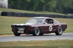 Mustang Cars, Ford Mustang, Shelby Gt350r, Road Race Car, Vintage Mustang, Car Man Cave, Classic Mustang, American Classic Cars, Vintage Race Car