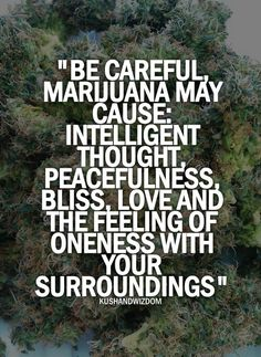 They also say couples who smoke weed together have better more functional relationships. Seriously, look it up!