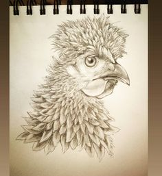 "18 Me gusta, 0 comentarios - Casanmiju's Drawings (@ice_cream_with_drawings) en Instagram: ""🐔🐔 . . . . . . . #sketch#sketchbook #sketchwork #sketchart  #drawing #pencil  #sketch_daily…"" Art Sketches, Owl, Pencil, Ice Cream, Bird, Drawings, Animals, Instagram, No Churn Ice Cream"