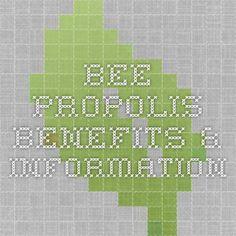 Daikon / Radish Benefits & Information - Health - Radishes Propolis Benefits, Bee Propolis, Radishes Benefits, Radish Recipes, Bee Keeping, Natural Healing, Herbs, Homemade, Silver