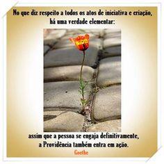 #sabedoria