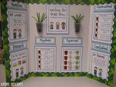 Create a super simple, kid friendly science fair project with this set. The set includes everything you need to make student booklets & this colorful display board. Read about it here: Kinder Doodles: Watching the Grass Grow Plant Study Experiment Plant Science Fair Projects, Science Project Board, Kindergarten Science Projects, Science Experiments Kids, Science For Kids, In Kindergarten, Easy Science, First Grade Science, Primary Science